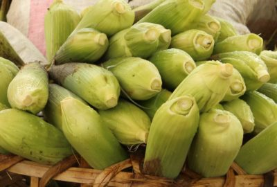dar-street-corn